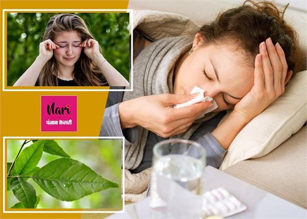 खांसी-जुकाम का रामबाण इलाज है बेलपत्र, मिलेंगे और भी जबरदस्त फायदे