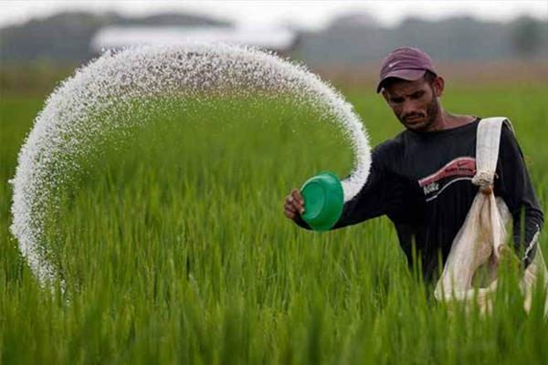 government is taking steps to facilitate business in fertilizer sector gowda