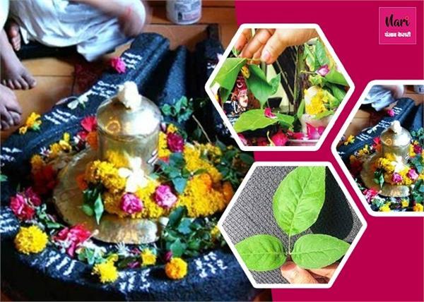 इन 10 दिनों में न तोड़े बेलपत्र, भगवान शिव होंगे नाराज