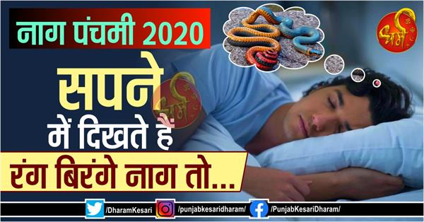 nag panchami 2020 if you see colorful snake in dream then