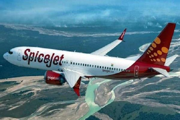spicejet will also fly to america after air india