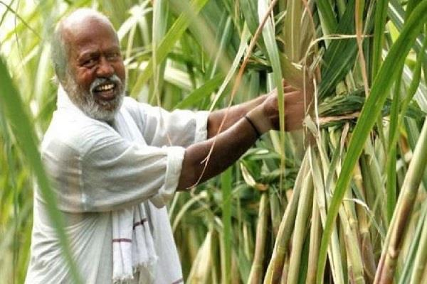 good news for sugarcane farmers goa government will give rs 5 23 crore
