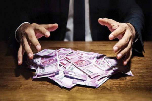 company escaped with 300 crore in jalandhar
