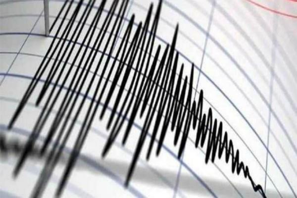 earthquake tremors felt 82 kilometers away from jaipur
