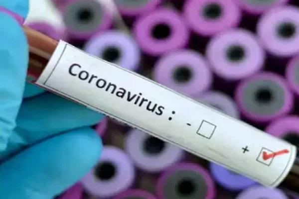 2502 corona positive cases found in bihar