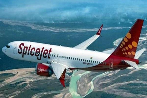 spicejet brought 269 indians back from amsterdam
