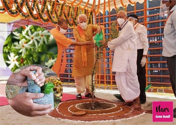 पीएम मोदी ने अयोध्या में लगाया हरसिंगार का पौधा, जानिए इसके लाजवाब फायदे