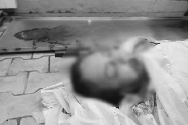 case of snatching corpses important disclosure in post mortem report