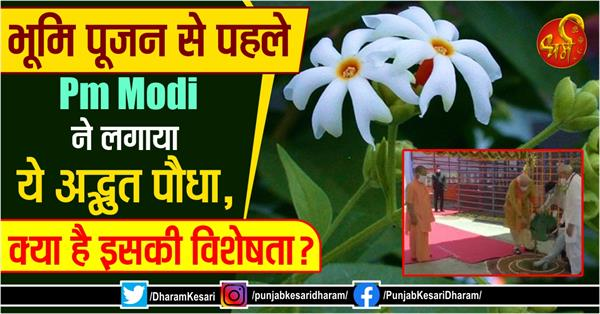 pm modi planted this amazing plant before bhoomi pujan