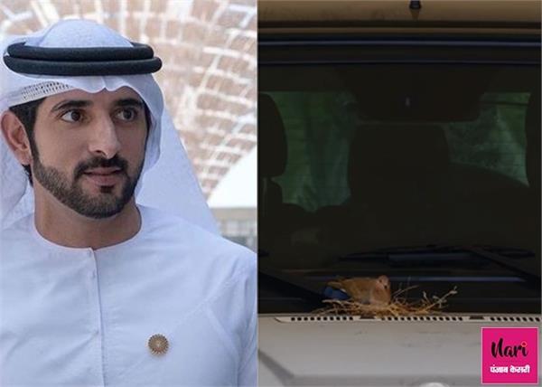 दुबई के क्राउन प्रिंस की दरियादिली, घोंसले को बचाने के लिए छोड़ दी अपनी SUV कार
