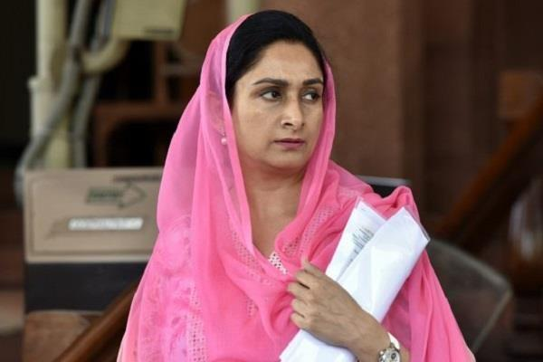harsimrat badal resigns from cabinet on issues of agricultural bills