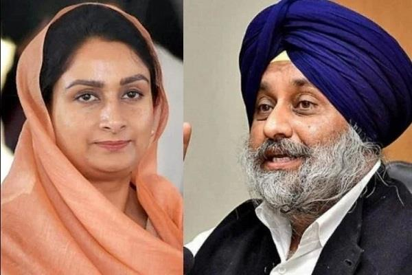 farmers  pain sukhbir and harsimrat s tears
