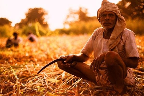 farmers of bhilwara supported agriculture bill
