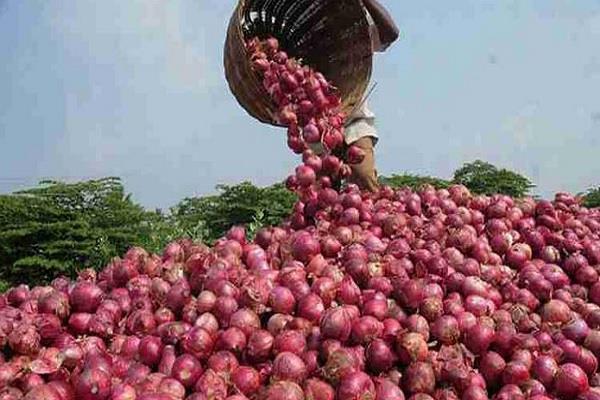 maharashtra government angry over ban on onion export