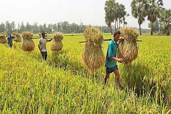 fao india pledges to support stable global food supply covid 19 crisis