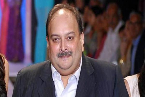 sebi issued order to seize accounts of mehul choksi and gitanjali james