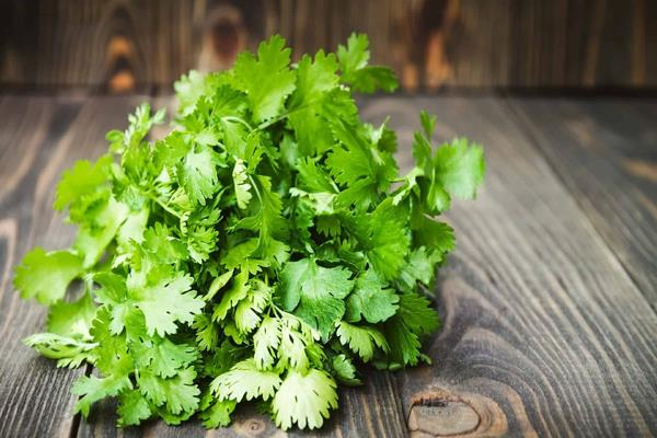 after coriander and onion now prices of green coriander rise price of rs 400