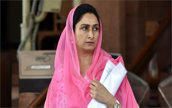 big news harsimrat badal may resign as union minister