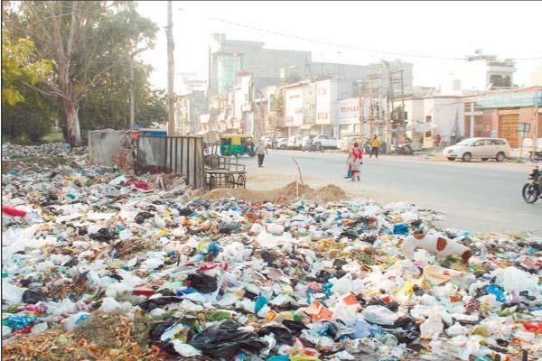 municipal corporation jalandhar survey 2021