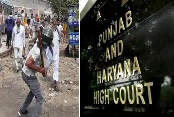 haryana highcourt hearing on lathicharge case in kurukshetra