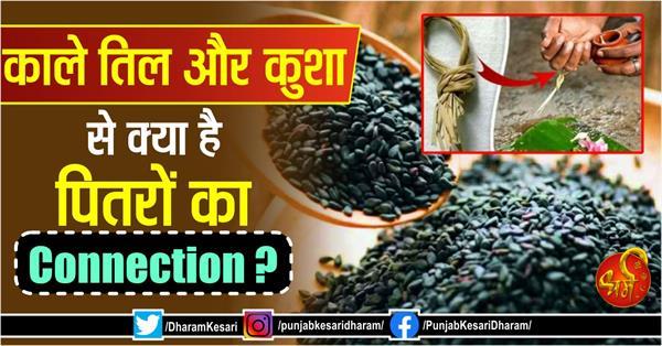 pitru paksha 2020 connection of black seeds and kusha