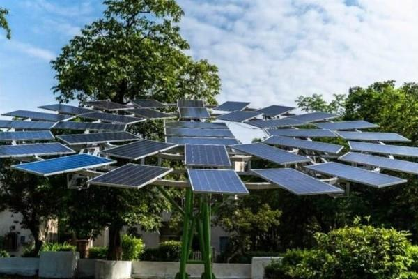 claim world largest solar tree planted in west bengal