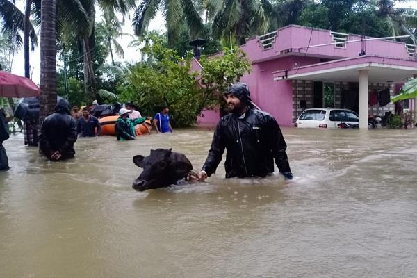 heavy rains caused destruction in karnataka