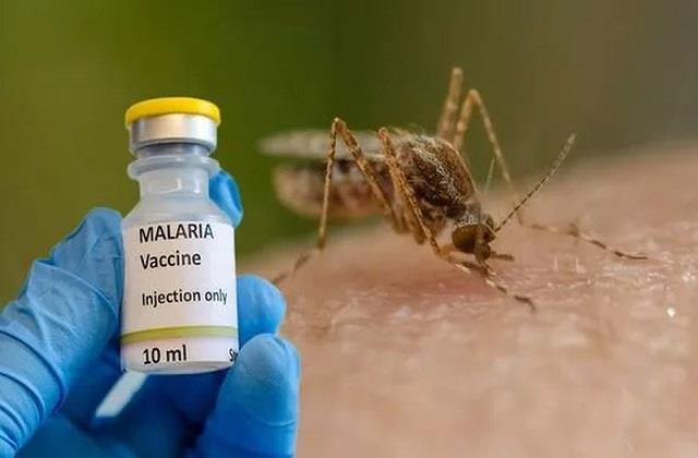 scientists get historic success in preventing malaria