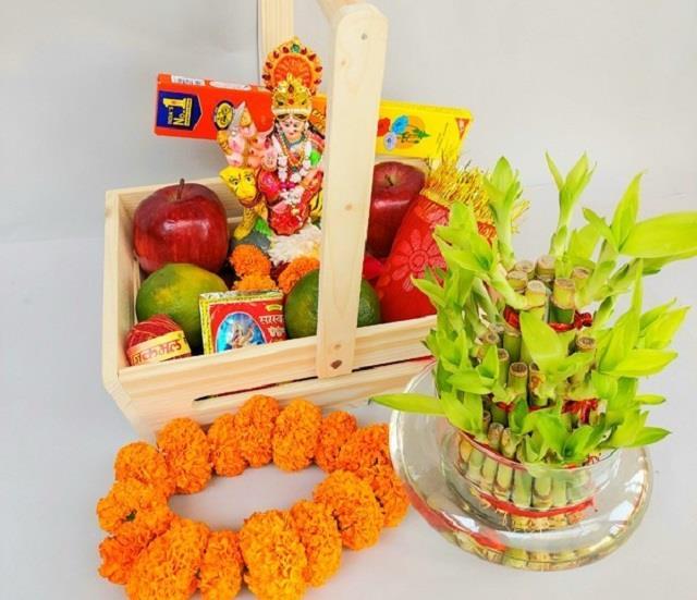 नवरात्रि में घर ले आएं ये पौधे, कभी खत्म नहीं होगी तिजोरी में बरकत