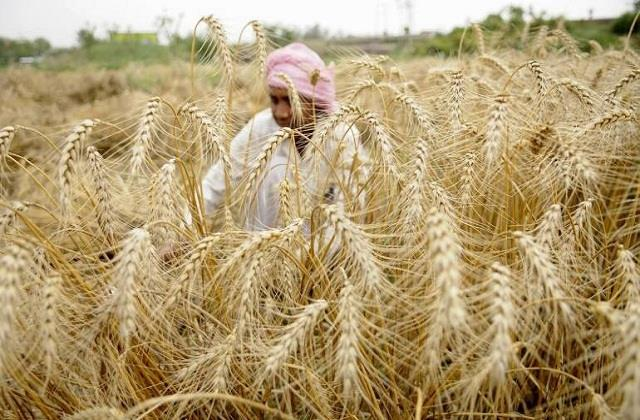 big fraud with negative subsidy farmers in india