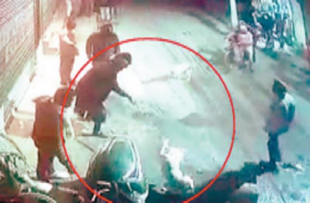 udhiana nihang singh injured a street dog cctv footage