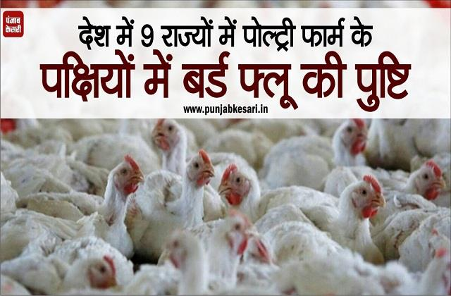 bird flu confirmed in poultry farm birds in 9 states in the country