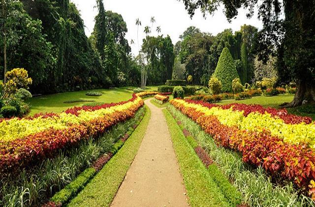 गुलाब के दीवाने जरूर बनाएं चंडीगढ़ के इस गार्डन में घूमने का प्लान, देखिए तस्वीरें