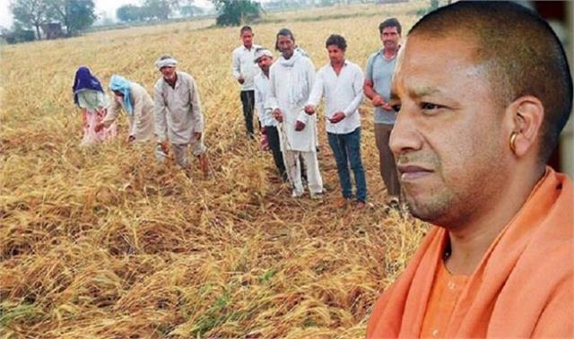 need to link farming with innovative efforts cm yogi