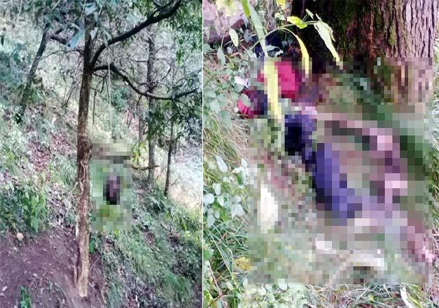 head found hanging from tree near igmc