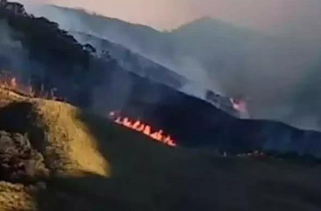 nagaland s dajuku valley fire extends to manipur