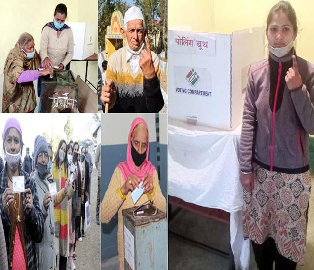 80 percent voting in 1208 panchayats of himachal