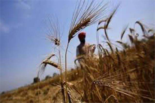 farmers will not face any difficulty in purchasing crops