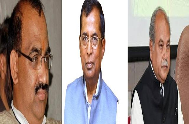 statements of three bjp leaders on defeat in elections