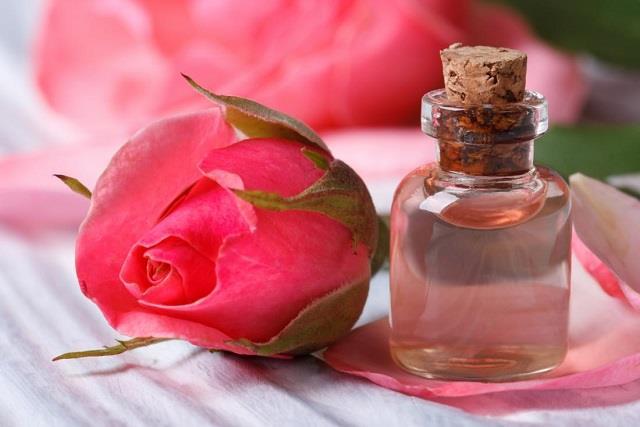 गुलाब जल के फायदे ही फायदे, जानकर आप भी शुरू कर देंगे इस्तेमाल