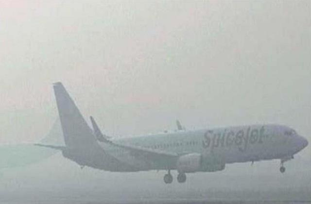 adampur delhi flight cancelled for today due to dense fog