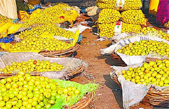 deoband s  penny  plum on the verge of disappearing from the neglect