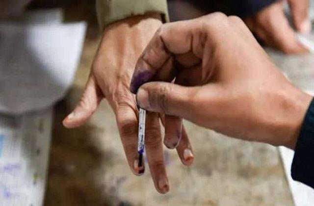 local body elections in punjab will start tomorrow at this time