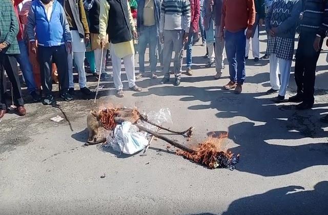 jwalamukhi mandal bjp protest against congress burnt beach market effigy