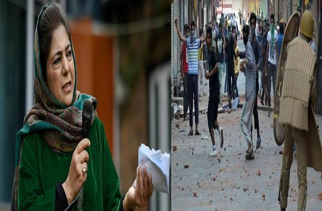 kashmiri youth quit stoning mehbooba would have given this advice earlier