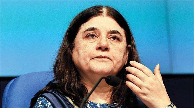 maneka gandhi said  in her entire political life she was