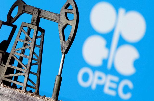 opec bypassed india s appeal saudi arabia advised to use