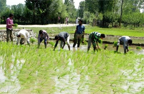 free power to farmers subsidized power to industry will continue