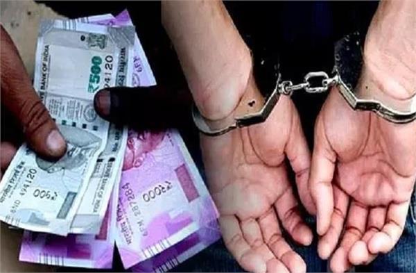 jalandhar tobacco businessman takes bribe