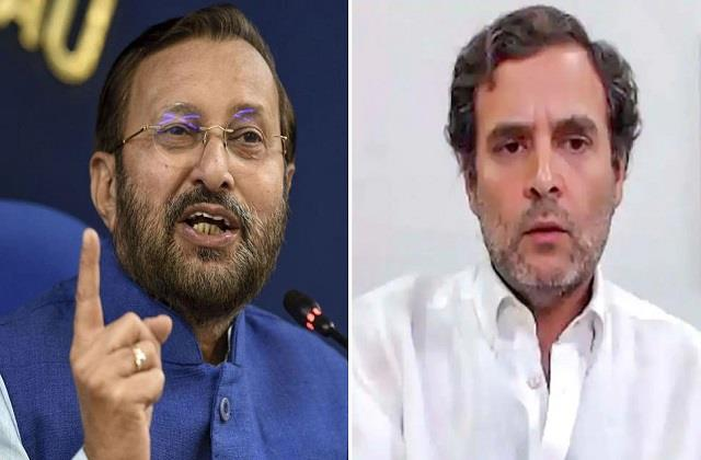 javadekar attacked rahul the cat went to haj after eating a hundred rats